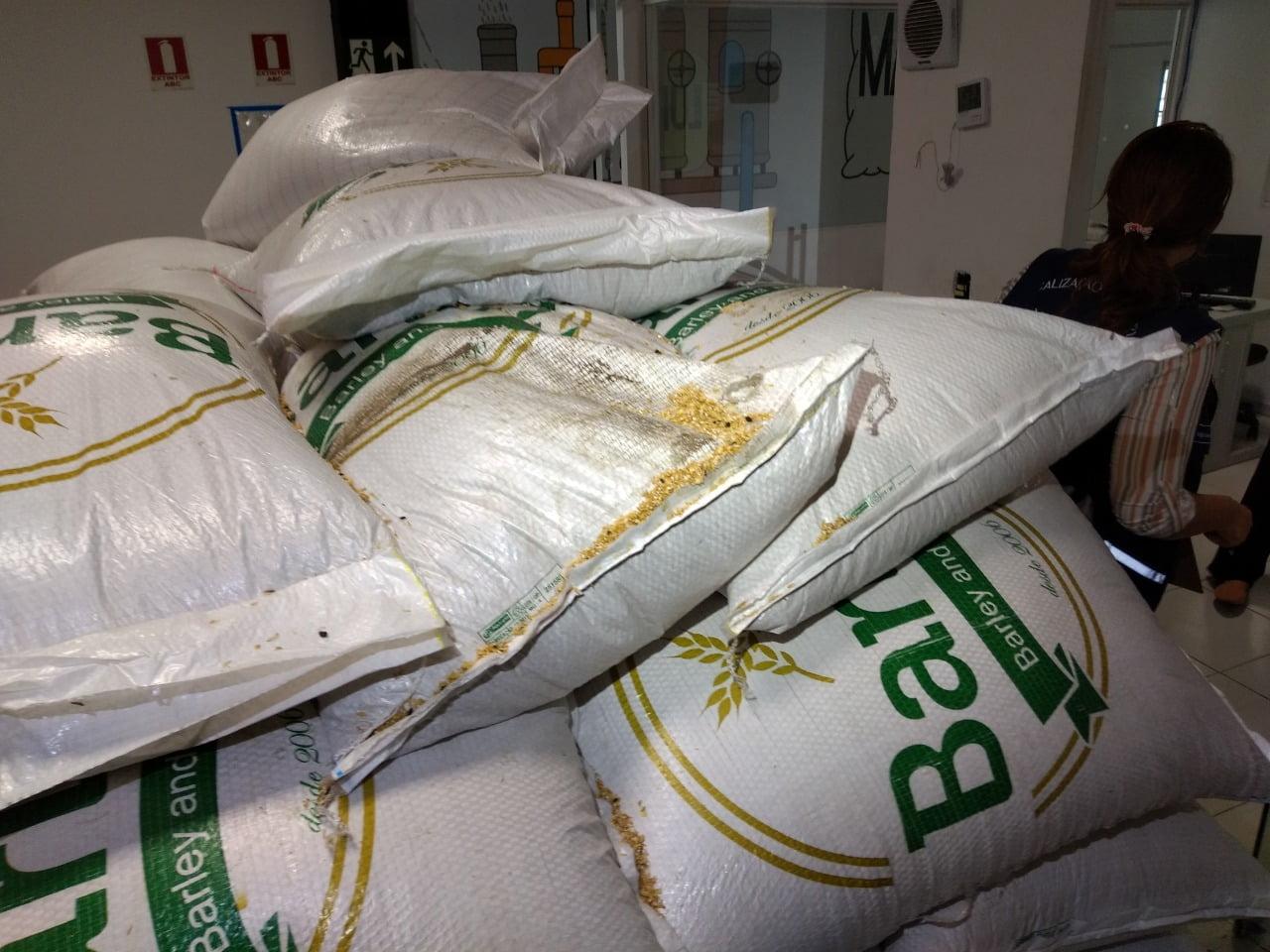 Fábrica de cerveja artesanal é interditada por irregularidades sanitárias