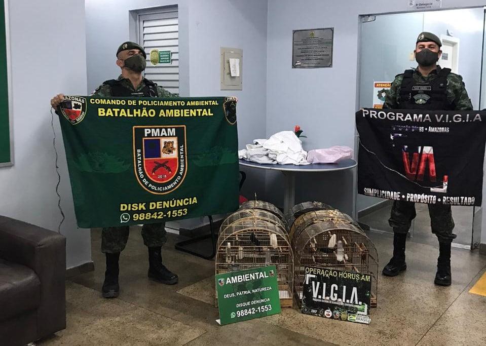 POLICIAIS DO BATALHÃO AMBIENTAL detêm homem e apreendem animais silvestres na zona sul