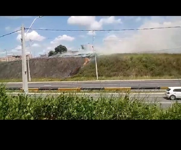 Aréa de mato pega fogo em Manaus